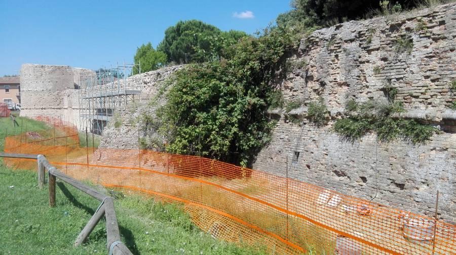Rocca Brancaleone 13